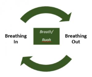 Breath Rhythms
